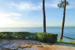 Pyla-sur-Mer : un marché  encore plus dynamique