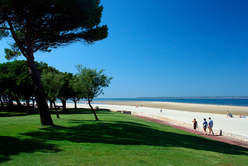 Rising demand for Arcachon