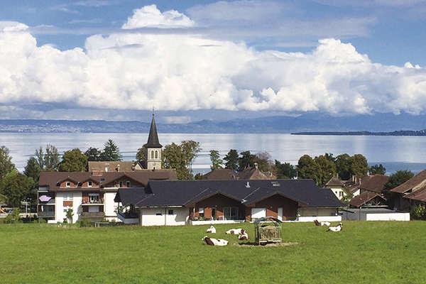 On the shores of Lake Geneva - Theme_2043_1.jpg