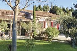 Saint-Rémy-de-Provence, at the heart of the Alpilles  - Theme_2080_3.jpg