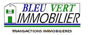 Logo BLEU VERT IMMOBILIER