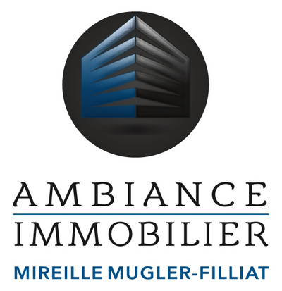 LogoAmbiance immobilier