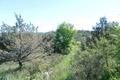 terrain LES VANS 1021879_1