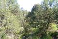 terrain LES VANS 1021879_2