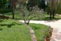 Maison EYRAGUES 1135063_1
