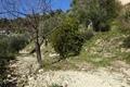 terrain EZE 1255968_3