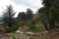 Maison CHATEAUNEUF-VILLEVIEILLE 1436205_2
