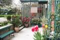 House VAISON-LA-ROMAINE 1495345_2
