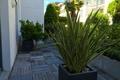 Appartement LA ROCHELLE 1524584_0