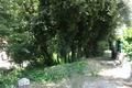 terrain LA TRINITE 1670608_3