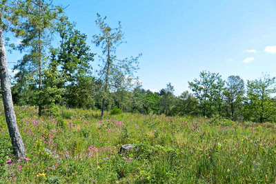 Building plot for sale in LABLACHERE   - 1328 m²