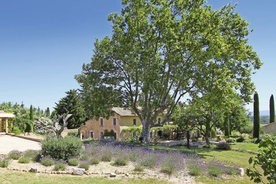 House for sale in ST-REMY-DE-PROVENCE  - 13 rooms - 500 m²