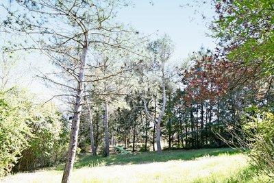 PEYNIER- terrain à vendre  - 900 m²
