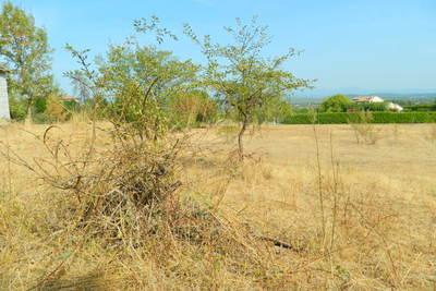 terrain à vendre à BANNE   - 13000 m²