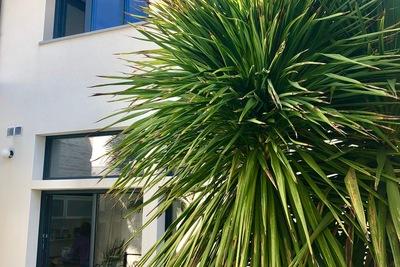 Maison à vendre à TOULOUSE COTE PAVEE - 5 pièces - 120 m²