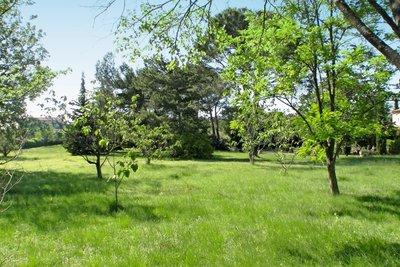 terrain à vendre à ST-REMY-DE-PROVENCE   - 3000 m²