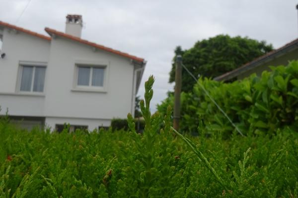ROYAN - Annonce Maison à vendre3 pièces - 65 m²