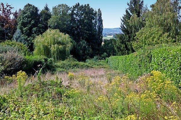 AMBÉRIEU-EN-BUGEY - Annonce terrain à vendre - 700 m²