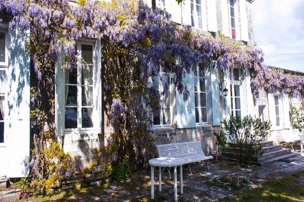 LA GRIPPERIE ST SYMPHORIE - Annonce Maison à vendre13 pièces - 500 m²