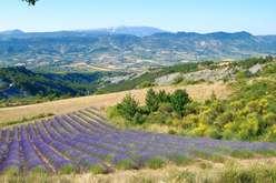 Drôme Provençale : charme et hospitalité