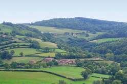 Beaujolais et Bourgogne, une belle dynamique