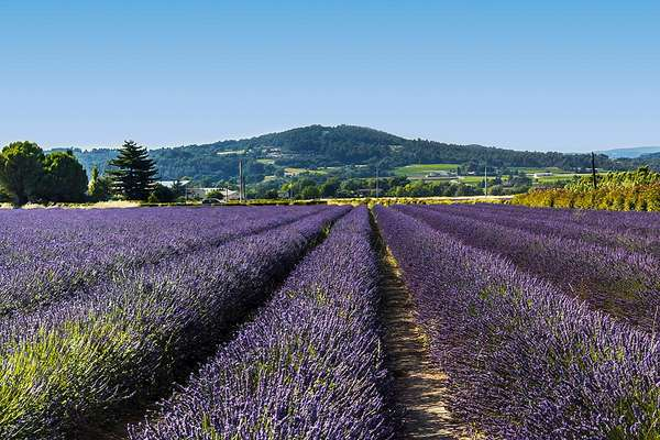 Luberon : majesty at the heart of Provence - Theme_2328_1.0