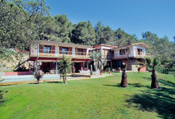 Villas north of Montpellier  - Theme_1119_1.jpg