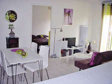 Rental investments in Toulouse - Theme_1388_2.jpg