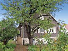 La Robertsau : between town and cou... - Theme_1431_2.jpg