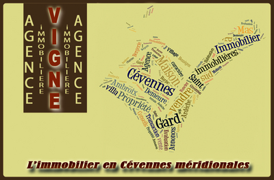 LogoAGENCE IMMOBILIERE VIGNE