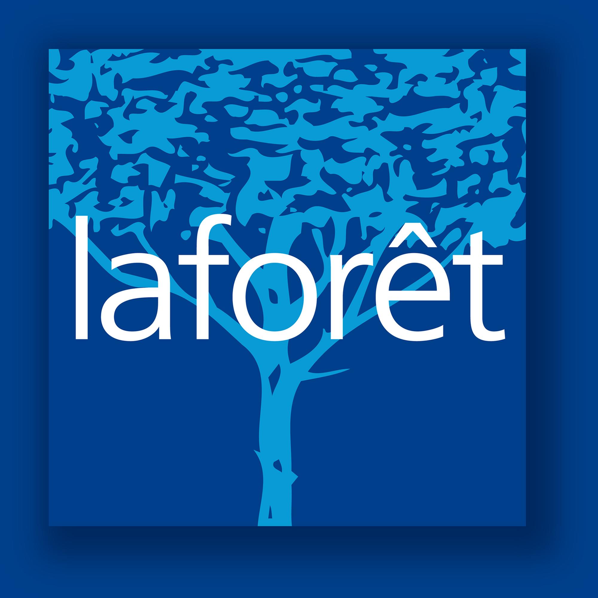 LogoRPI LAFORET SAINT LOUIS