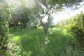 terrain ROYAN 1632625_0