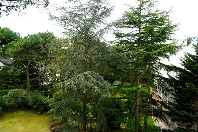 Appartement à vendre à LA BAULE  - 2 pièces - 40 m²