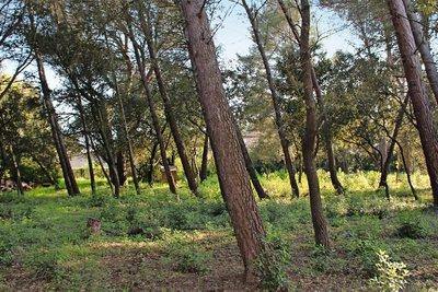 terrain à vendre à AIX-EN-PROVENCE   - 2500 m²