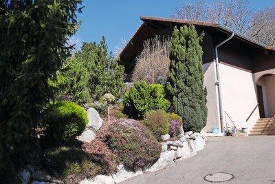 LUCINGES - Maisons à vendre