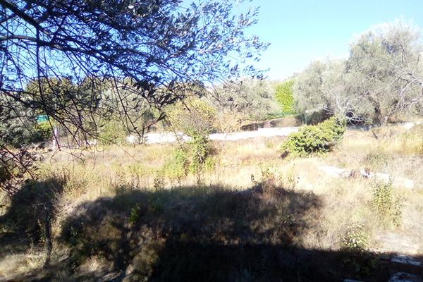 CONTES - Annonce terrain à vendre1500 m²