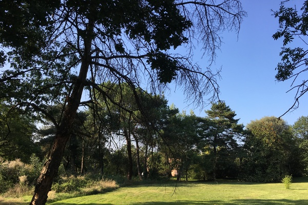 DARDILLY - Annonce terrain à vendre3160 m²