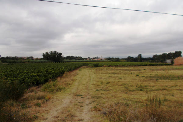 OLONZAC - Annonce terrain à vendre