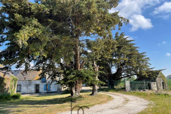 SURZUR - Annonce maison à vendre