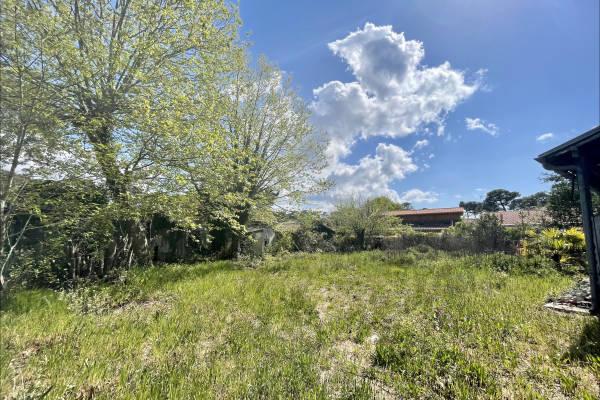 ARCACHON - Annonce terrain à vendre - 1110 m²